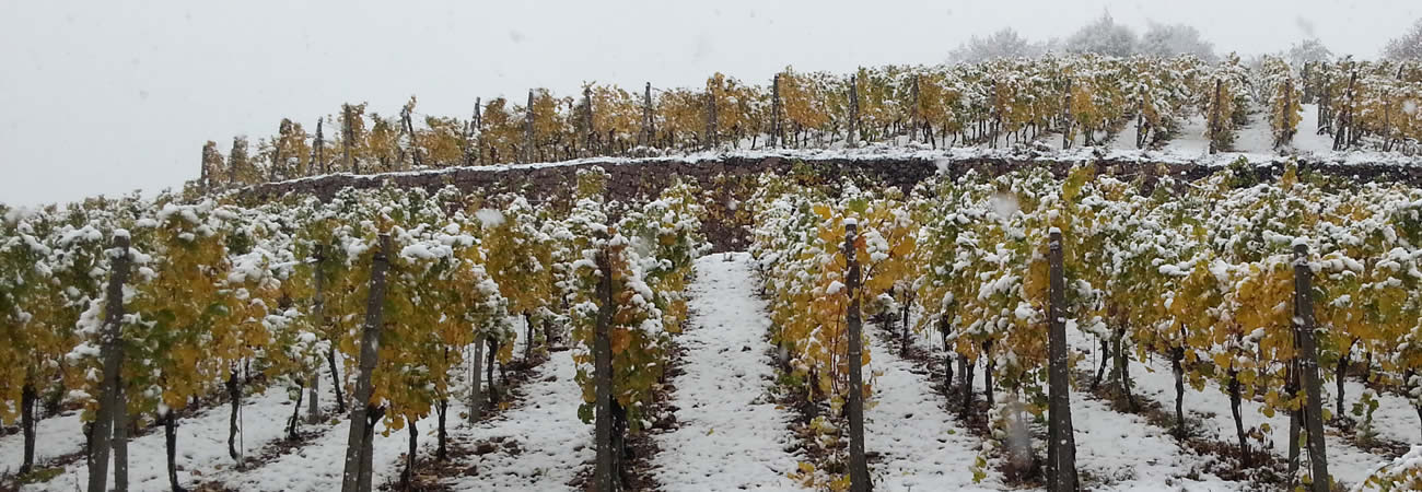 Herbst-winter 2012